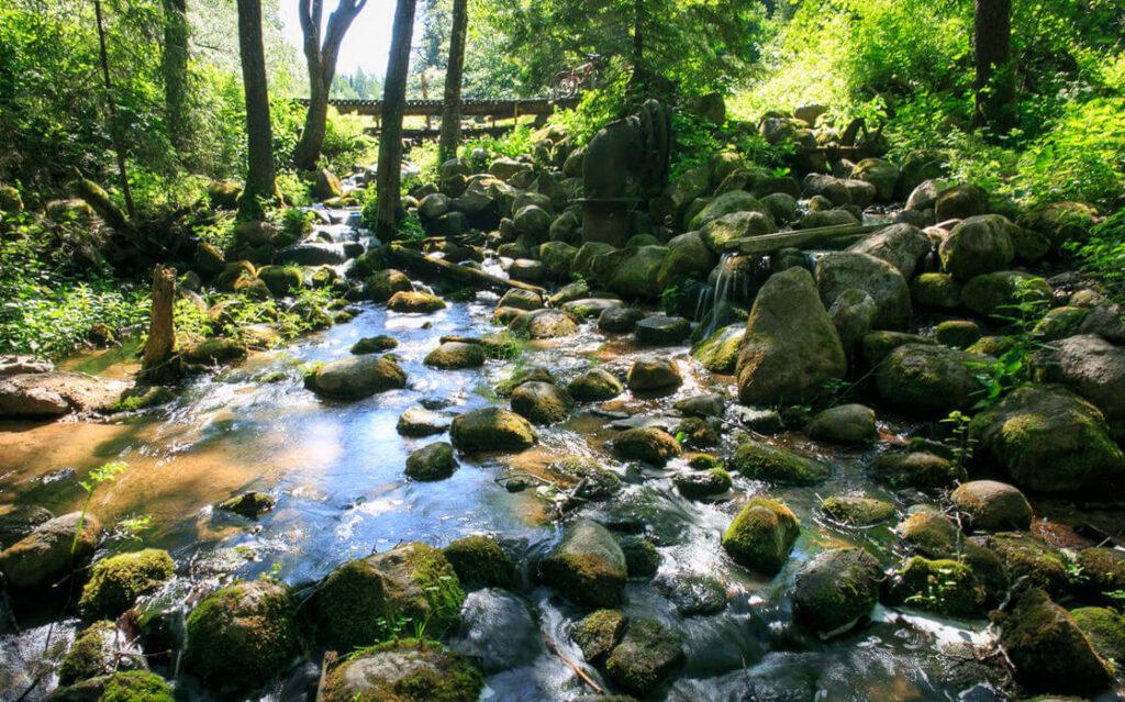 Голубые озера отпуск на Родине статья СМИ