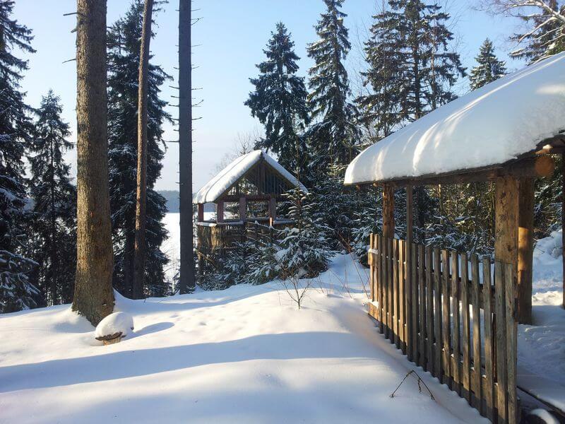 gallery winter 5